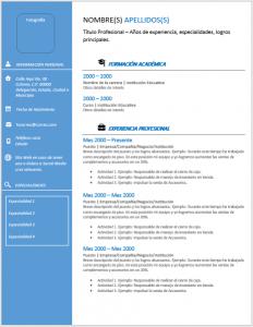 Formato de Currículo de Ingeniero