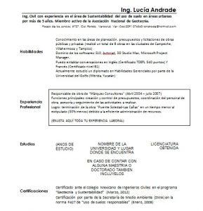 Ejemplo de Curriculum Vitae de Ingeniero Civil