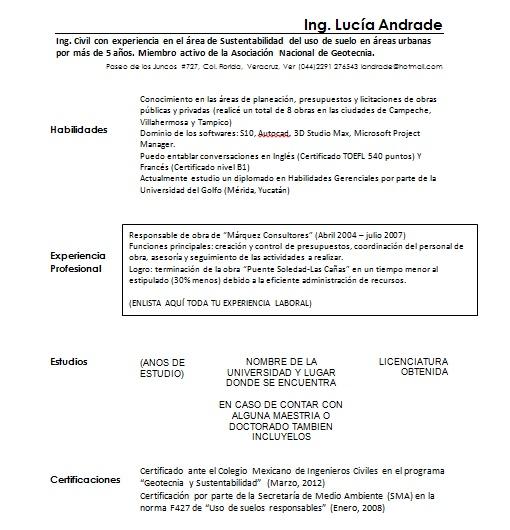 Curriculum Vitae Ingeniero Civil Ejemplos Formatos Y Plantillas
