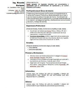cv-ingeniero-ejemplo