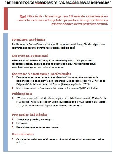 Curriculum Vitae De Un Medico Ejemplos Formatos Y Plantillas