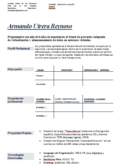 Curriculum Vitae Programador Ejemplos Formatos Y Plantillas