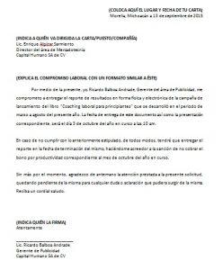 Formato - Carta compromiso laboral