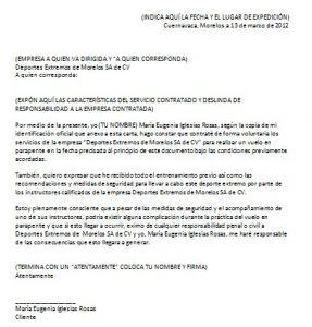 Formato de Carta Responsiva Personal
