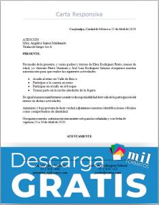 Fomato de Carta Responsiva para llenar y descargar en Word o PDF