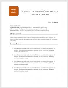 plantilla-para-descripcion-de-puesto-director-general
