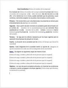 formato-acta-constitutiva