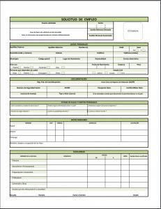 Ejemplo y Formato de Solicitud de Empleo PDF
