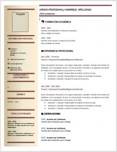 Formato de Currículo de Ingeniero Industrial