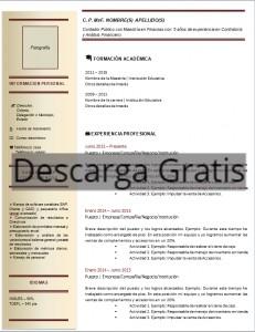 Formato Currículum de un Contador