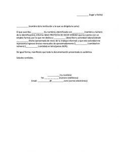Carta Bajo Protesta de Decir Verdad Ingresos