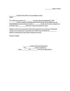 Carta Bajo Protesta de Decir Verdad para el ISSSTE
