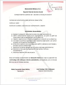 Reporte Final de Servicio Social Ejemplo