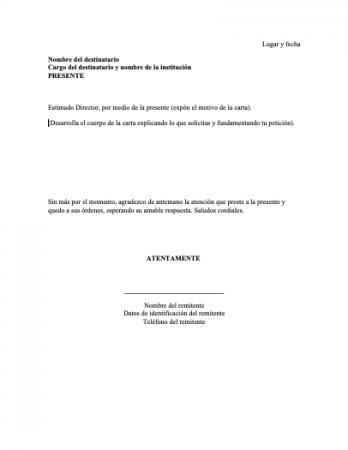 Carta formal a un Director