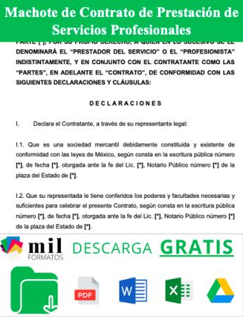 Formato de Contrato de Prestacion de Servicios Profesionales