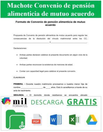 Formato de convenio de pensión alimenticia de mutuo acuerdo 1